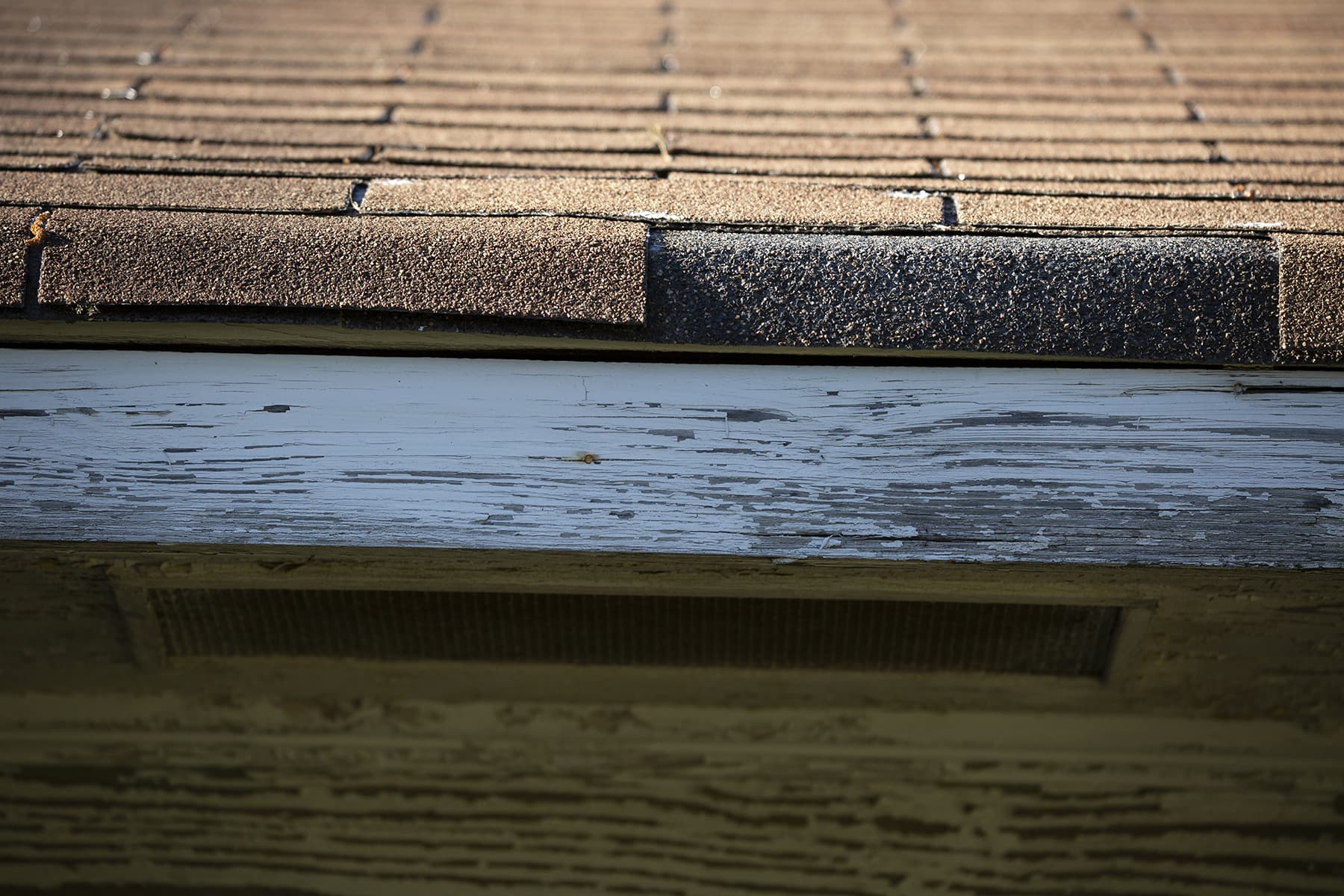 cost of a new roof