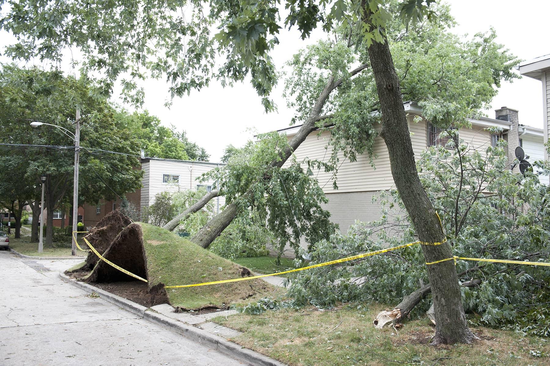 wind damage roof